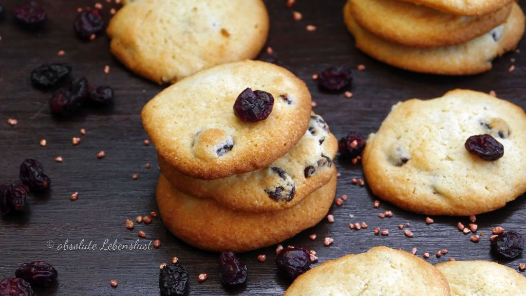 cranberry haferflocken kekse, haferflocken plätzchen, haferflocken kekse, cranbrery cookies backen, plätzchen rezepte