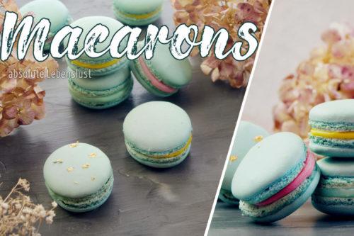macarons selber machen, macarons füllung, weiße schokolade, macarons rezept, deutsch, backen, macarons, macarons füllung weiße schokolade, macarons rezept