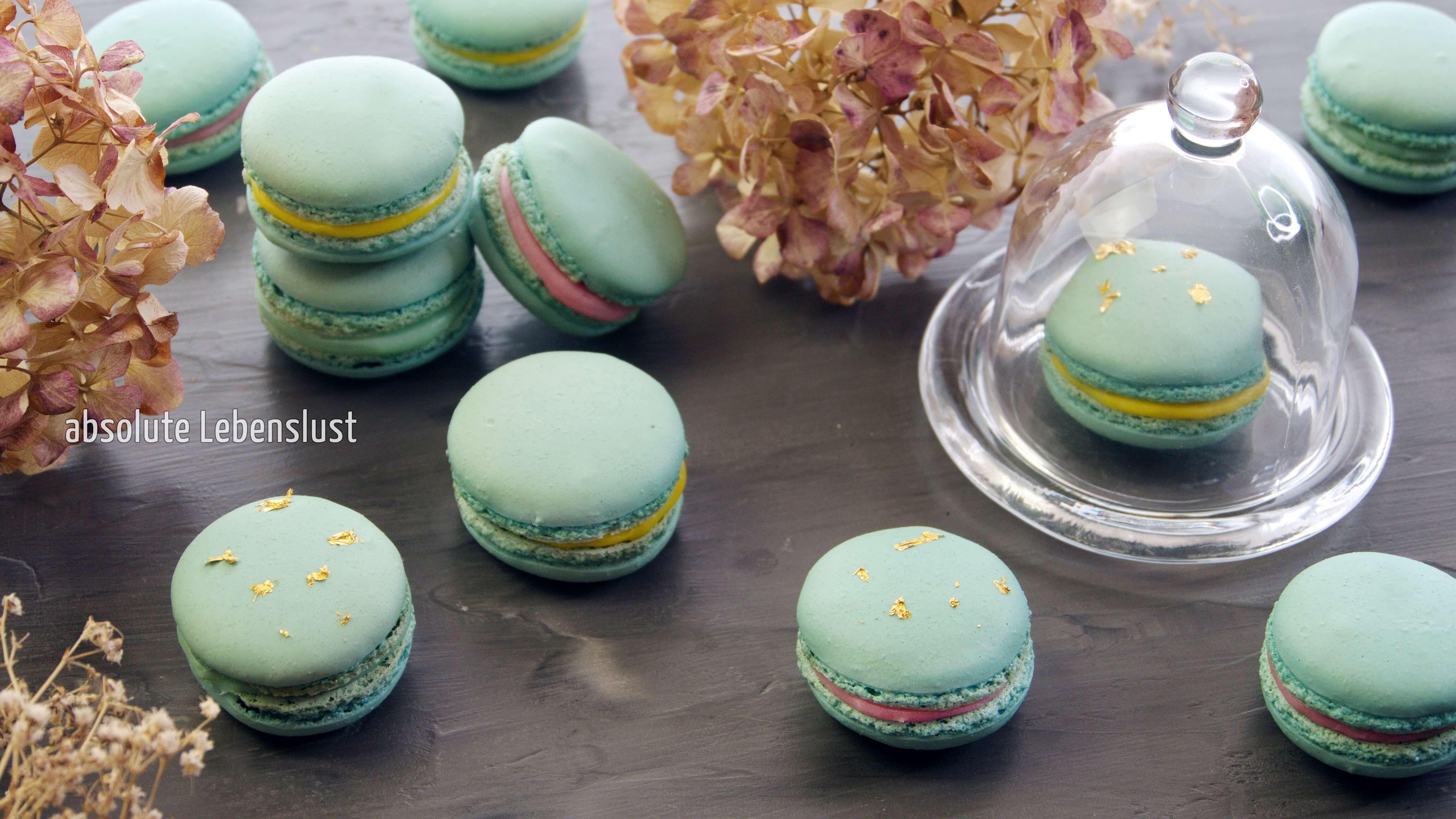 macarons selber machen, macarons füllung, weiße schokolade, macarons rezept, deutsch, backen, macarons