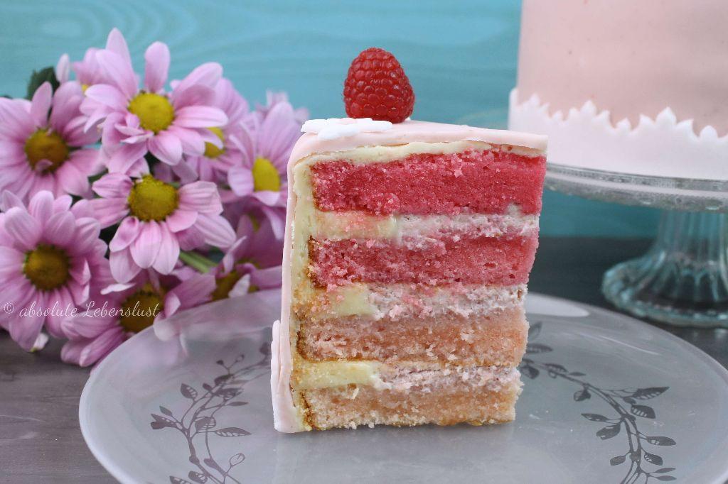 ombre cake, farbverlauf, torten, torten backen, torten selber machen, kleine torte, himbeertorte backen